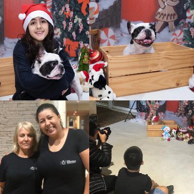 Uma sessão fotográfica (pet natalina) com Karin Marcitello 📷