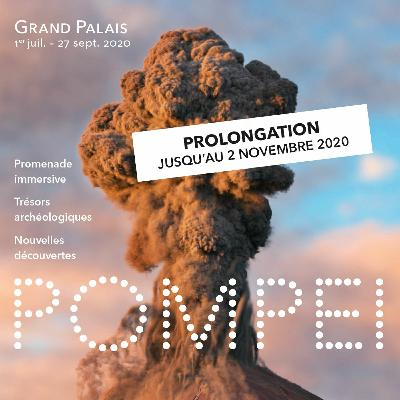"""Conférence """"Pompéiennes, une histoire de femmes sous le haut empire romain  (09/09/2020)"""
