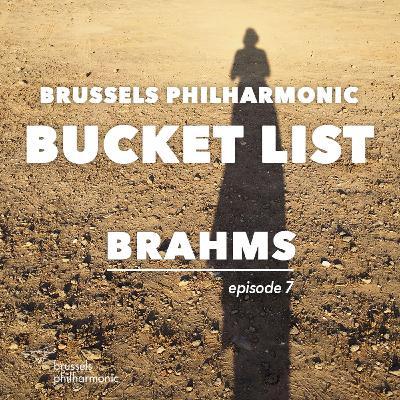 Feest met de 1ste van Brahms: Hans van der Zanden (hoorn)