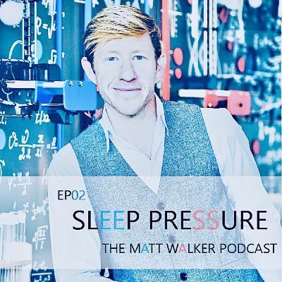 #02 Sleep Pressure