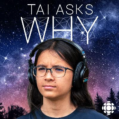 Ask Tai Why: Fear, time and the colour of colours