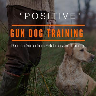 """Positive"" Gun Dog Training"