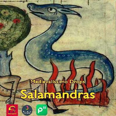 Medievalíssimo Drops: Salamandras