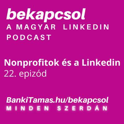 22. epizod - Nonprofitok a Linkedinen