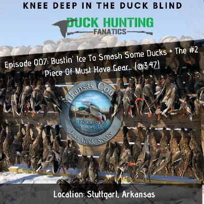 Camo, Pintails, & A Clean Blind Equal Success? + Arkansas Duck Report