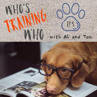 Who's Training Who - Episode 5 - Amber Walker - Working With Animals In Zoos And Correlation With Working With Dogs