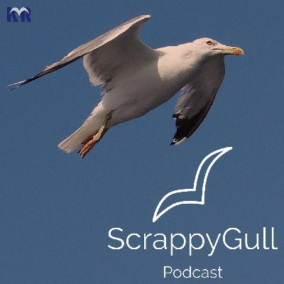 """ScrappyGull 009: """"How Often Should I Podcast?"""" Consider These Three Things"""