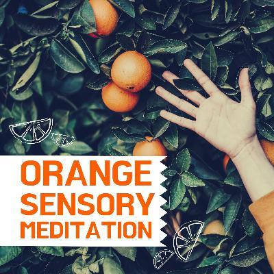 Intuitive Soul Care Sensory Meditations - ORANGE