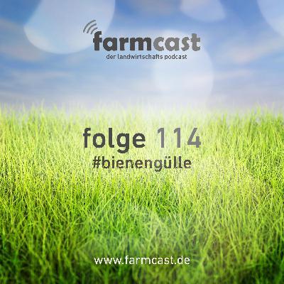 folge 114 #bienengülle
