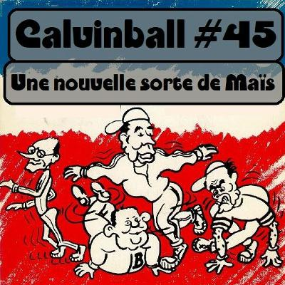 Calvinball #45 - Une nouvelle sorte de maïs