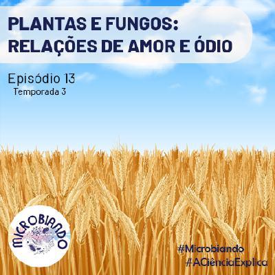 Plantas e fungos: relações de amor e ódio – Microbiando