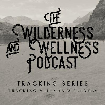 Tracking Series 02 – Tracking and Human Wellness