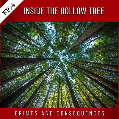 EP94: Inside the Hollow Tree