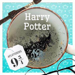Aflevering 9¾: Harry Potter