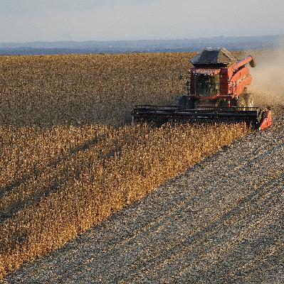 Brasil importou em outubro o maior volume de soja em 17 anos