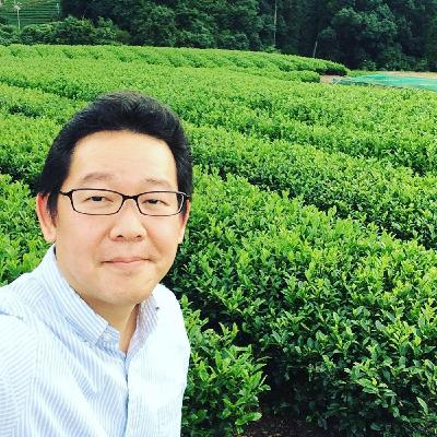 Here Is Why We Should Drink Japanese Tea