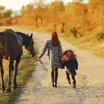 What is Equine Therapy in Addiction Treatment (Podcast)