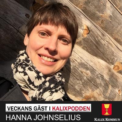 Hanna Johnselius – Präst och författare