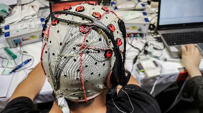 Micro Wave: I'll Peanut Jam Your Brain
