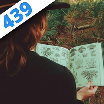 439 - L'encyclopédie des plantes alimentaires, avec Michel Chauvet