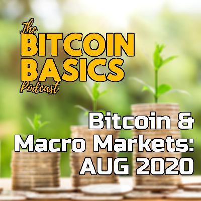 Bitcoin & Macro Markets: AUG 2020 | Bitcoin Basics (70)