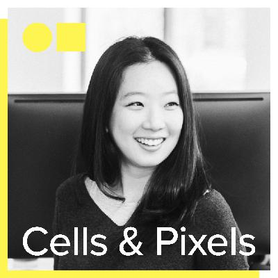 Design Leadership with Jessica Ko – CEO and co-founder, Playbook (Ex: Google, YouTube, OpenDoor)