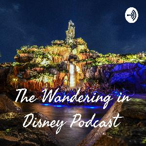 Episode 38 - Our Top 20 Disney Attractions