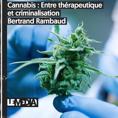 Symptôme Critique   Cannabis : Entre thérapeutique et criminalisation   Bertrand Rambaud