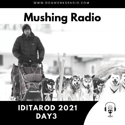 Iditarod 2021 Daily Coverage | Day 3
