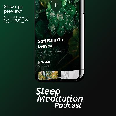 RAIN ON LEAVES, a short preview of a mix from the Slow App (iOS) 😴 Try a 14-day free trial, and experience the big difference yourself.