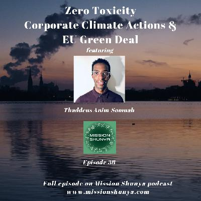 38: Conversation on Zero Toxicity, Corporate Climate Actions, EU Green Deal & more