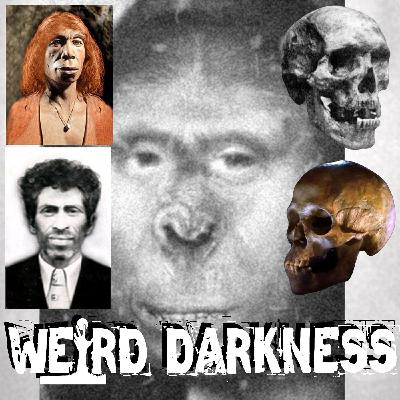 """""""ZANA: THE BIGFOOT THAT BRED WITH HUMANS"""" and More Freaky True Stories! #WeirdDarkness"""