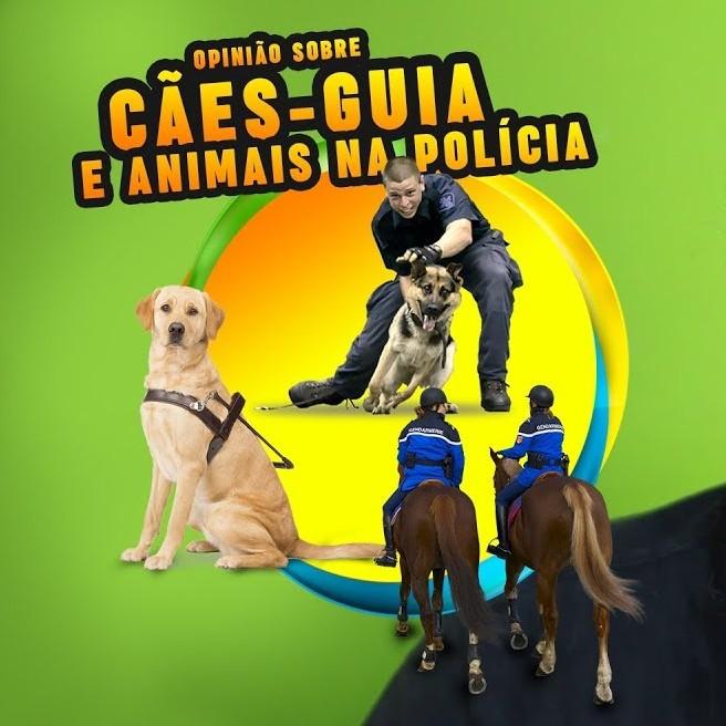 Cães-guia e animais na polícia: opinião de um vegano