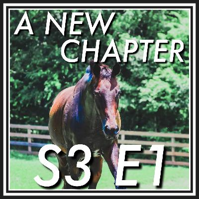 1 || A New Chapter