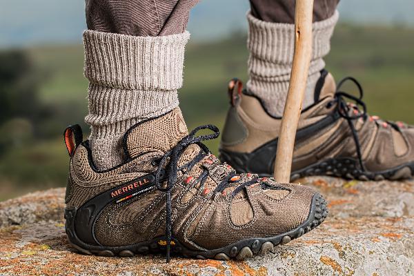Invasive Species and Hiking
