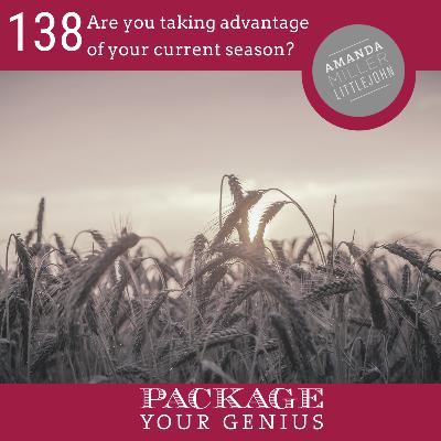 PYG 138: Are you taking advantage of your current season?