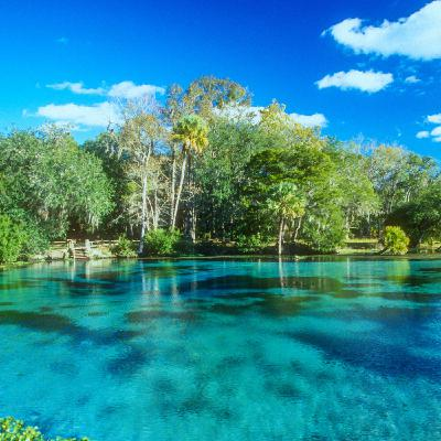 Are Florida Springs Under Threat?