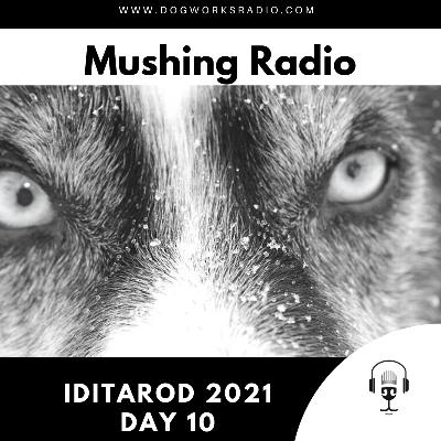 Iditarod 2021 Daily Coverage | Day 10
