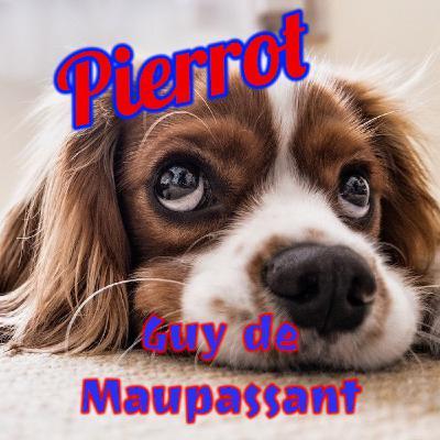 Pierrot, Guy de Maupassant (Livre audio)