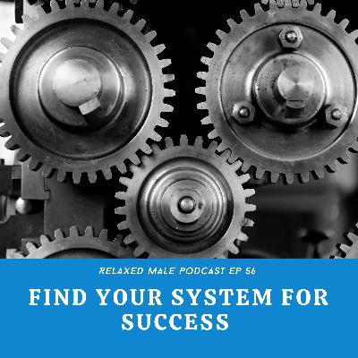 Find Your System for Success