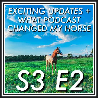2 || Exciting Updates + What Podcast Changed My Horse