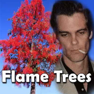 De-mystifying the song Flame Trees Pt 2 - De-mHistory Podcast 20-04