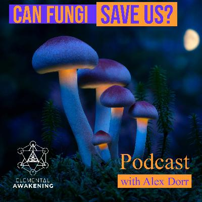 EA Ep. 54 - The world of mushrooms and how they can save us from ourselves with Alex Dorr
