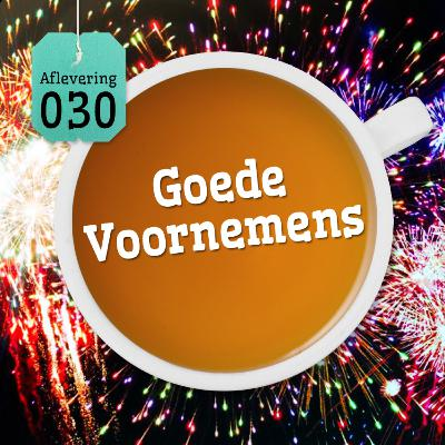 Aflevering 30: Goede Voornemens