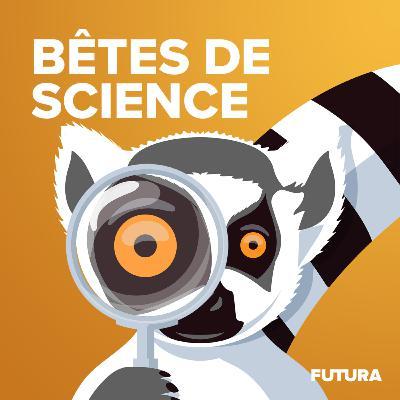 Bêtes de science, le teaser