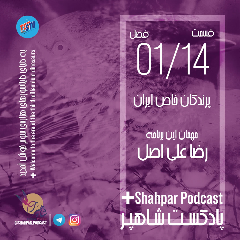 فصل اول - قسمت چهاردهم - پرندگان خاص ایران