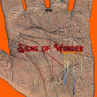 Signs Of Wonder