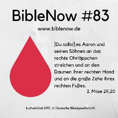 BibleNow #83: 2. Mose 28,31-29,20