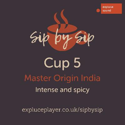 Cup 5, Master Origin India: Intense and spicy