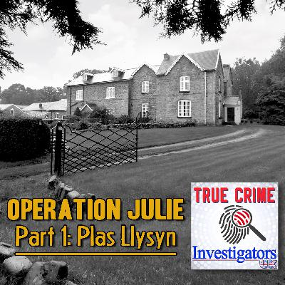 Episode 5: Operation Julie Part 1 - Plas Llysyn